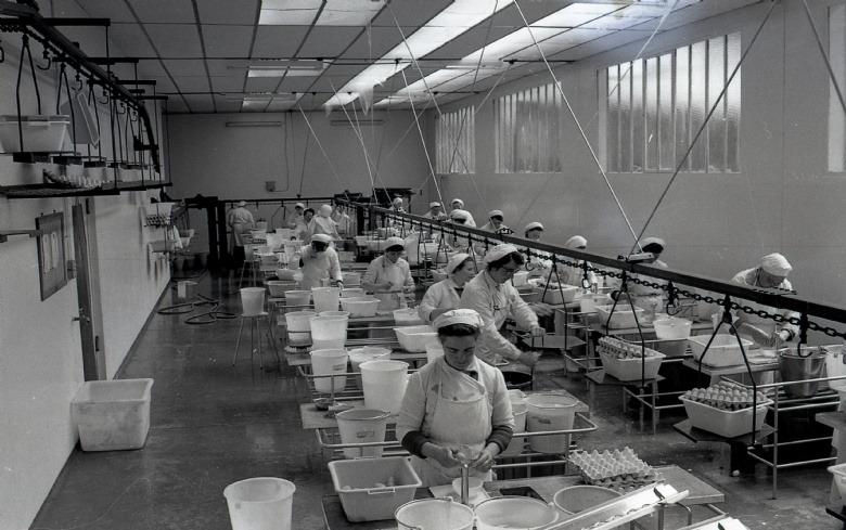 Première Casserie d'oeufs Industrielle de France