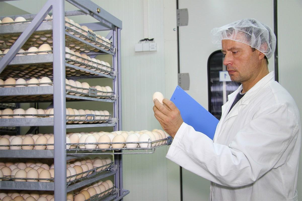 Maine Agrotec - Panneaux Sandwich Locaux conditionnement